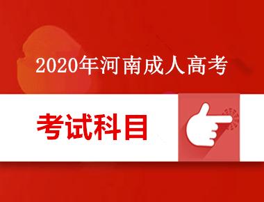 2020年河南成人高考考试内容